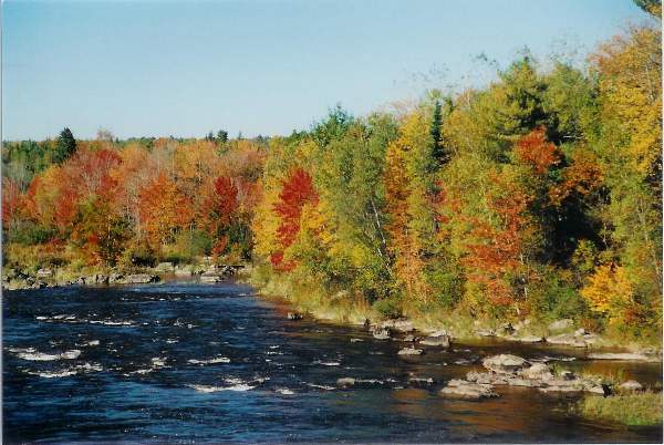 River view in the fall